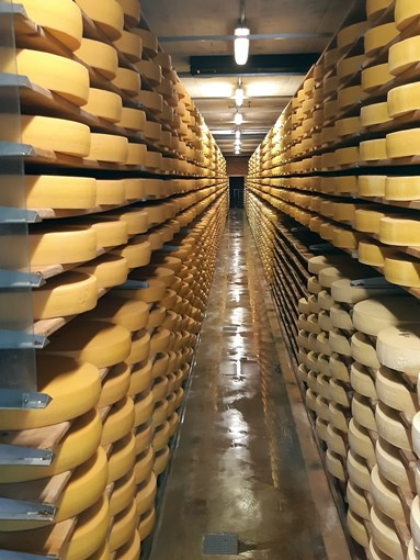 Fromage Gruyeres